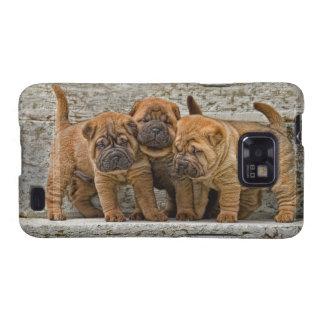 Shar-Pei 4 perritos de la semana en una línea Samsung Galaxy S2 Carcasas