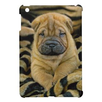 Shar-Pei 4 week old Pup iPad Mini Covers