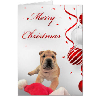 Shar-Pei Christmas Card