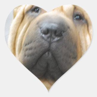 Shar Pei con las arrugas Pegatina En Forma De Corazón