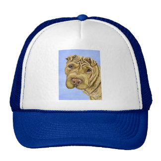 Shar Pei Dog Art - Aspen Hat