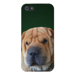 Case Savvy iPhone 5 Matte Finish Case with Shar-Pei Phone Cases design