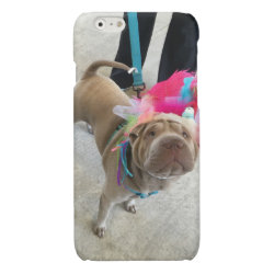 Case Savvy iPhone 6 Glossy Finish Case with Shar-Pei Phone Cases design