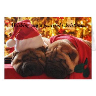 Shar Pei Peaceful Christmas Card