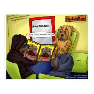Shar-Pei Plastic Surgery Funny Tees Mugs & Gifts Postcard