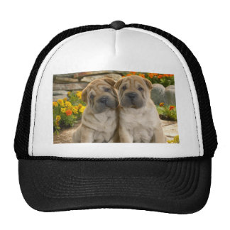 Shar Pei Puppies Trucker Hat