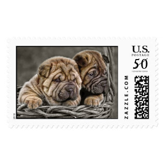 Shar-Pei Puppies in Basket Postage
