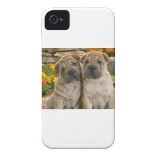 Shar Pei Puppies iPhone 4 Case