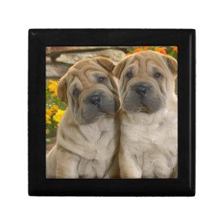 Shar Pei Puppies Jewelry Box