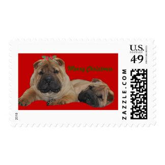 Shar Pei Puppies postage