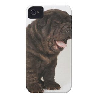 Shar Pei puppy yawning, studio shot iPhone 4 Case-Mate Case