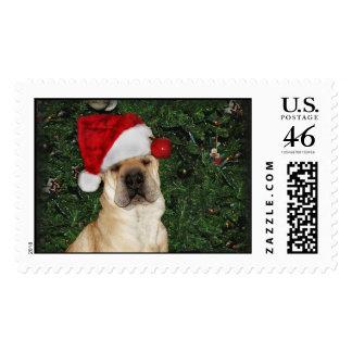 Shar-pei X-mas Postage Stamp