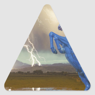 Share Favorite DIA Mustang Bronco Lightning Stor Triangle Sticker
