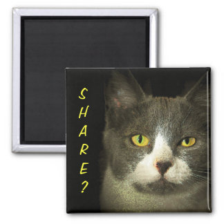 SHARE? Got Leftovers? Hugery Kitty 2 Inch Square Magnet
