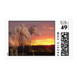 Share Our Day Horse Couple Postage Stamp