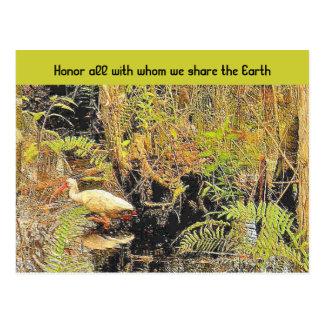 share the earth postcard