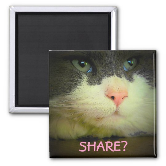 Share with kitty? 2 inch square magnet