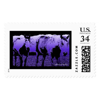 Shared Trail Postage
