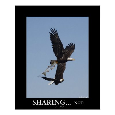 Demotivational Posters  Sale on Sharing Bald Eagles Demotivational Photo Poster From Zazzle Com