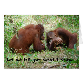 Sharing  Gossip Orangutan Friends Greeting Card