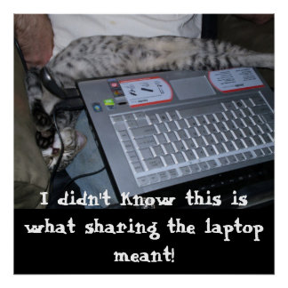 Sharing the Laptop Poster