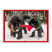 Sharing the season the Newfie Way! Card
