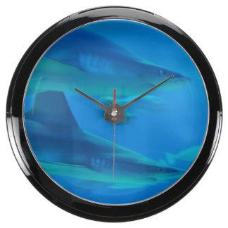 shark-102.jpg relojes pecera