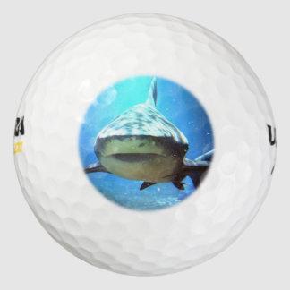 shark-5.jpg pack of golf balls