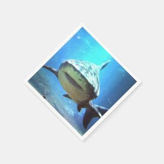 shark-5.jpg napkin