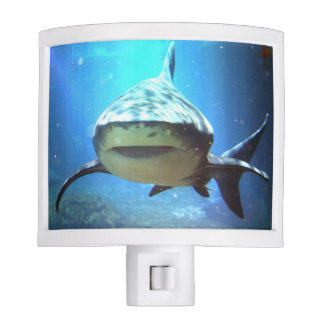shark-5.jpg night light