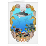 Shark and Reef Card