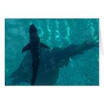 Shark and Stingray Greeting Card