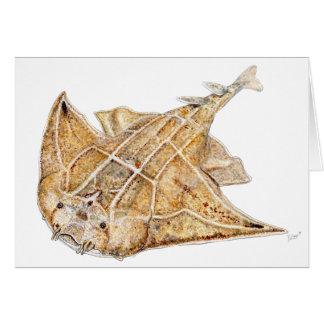 Shark angel, angelote card