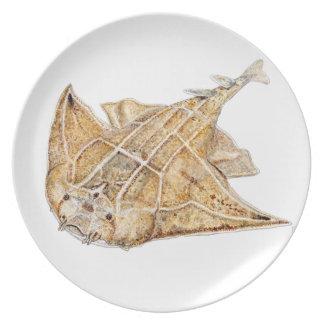 Shark angel, angelote plate