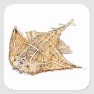 Shark angel, angelote square sticker
