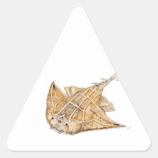 Shark angel, angelote triangle sticker