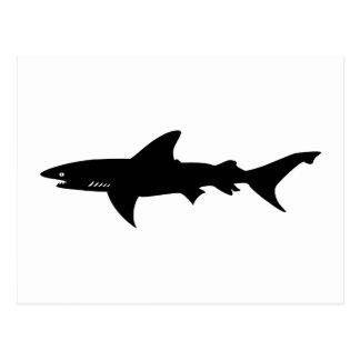 Shark Attack - Diving with Sharks Elegant Black Postcard