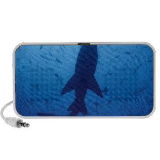Shark Attack Portable Speakers