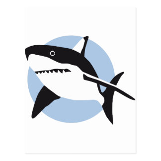 shark attack post cards