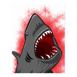 Shark Attack Postcard