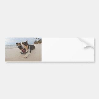 Shark Attack Simulation Bumper Stickers