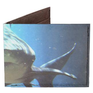 Shark Billfold Wallet