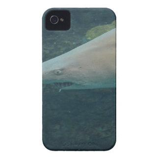 Shark Bite iPhone 4 Cases