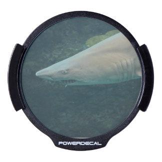 Shark Bite LED Car Window Decal