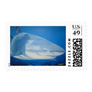 Shark  Bite Stamp