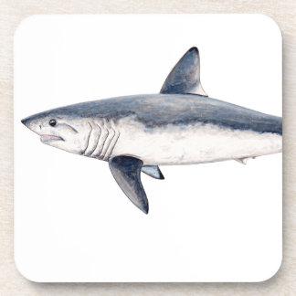 Shark cailon coaster