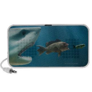Shark chasing sea bass chasing juvenile mp3 speakers