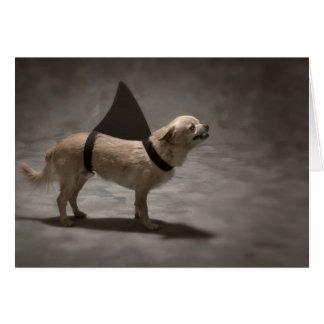 Shark Dog II Note Card