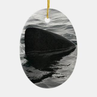 Shark Fin Ceramic Ornament