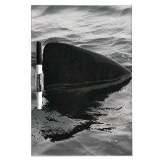 Shark Fin Dry Erase Boards
